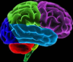 Mapping Brain Control – BRAIN CONTROL!!