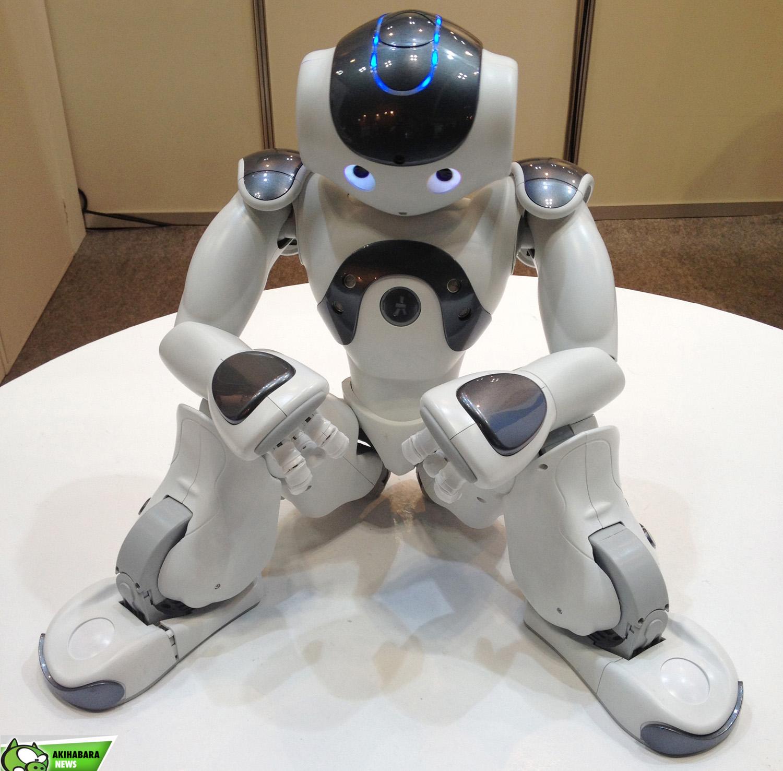 iREX.ROBOTS.28